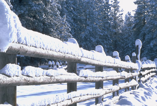 Frostover Winter Retreat